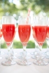 wedding watermelon champagne