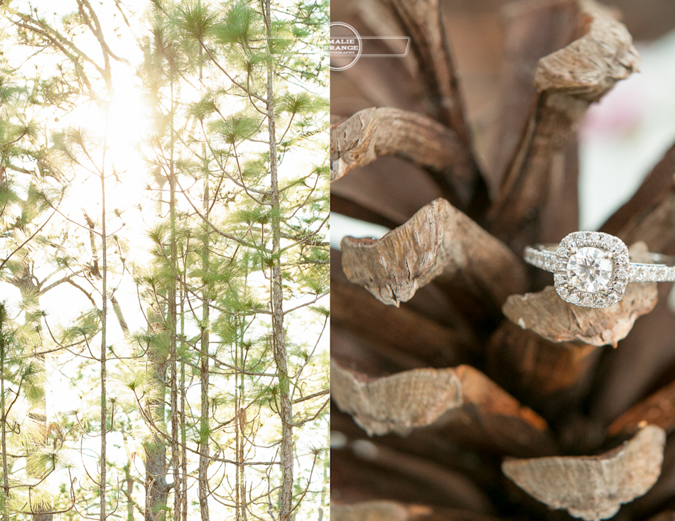 Orlando wedding photographer | Engagement photography | Bella Collina