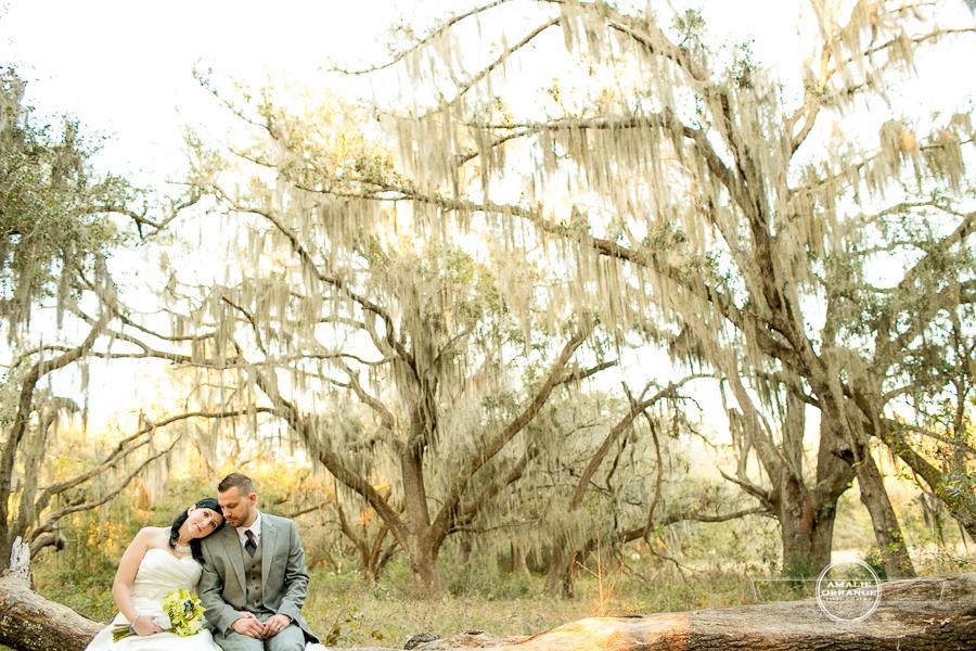 Bride and groom sitting on tree